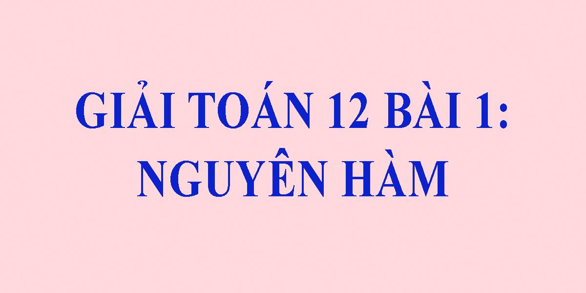 toan-12-nguyen-ham-giai-bai-tap-sgk-hay-nhat.png