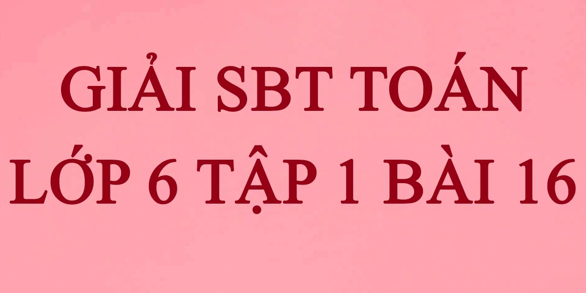 giai-sbt-toan-lop-6-bai-16-tap-8.png