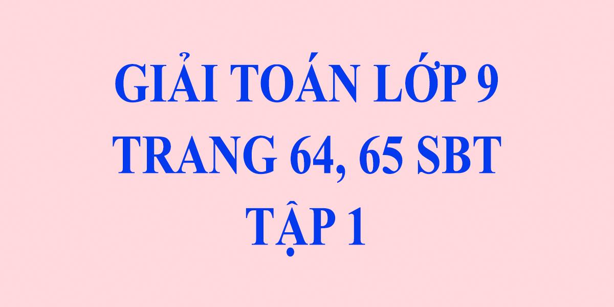 giai-sach-bai-tap-toan-9-tap-1-trang-64-65-chinh-xac-nhat.png