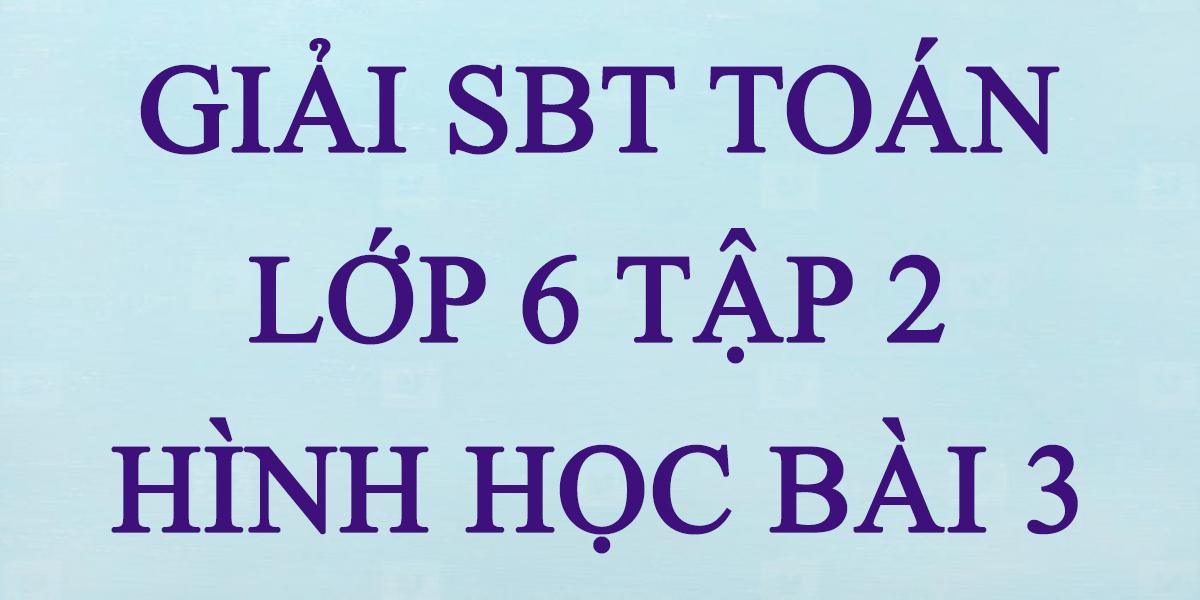 giai-sbt-toan-lop-6-tap-2-hinh-hoc-bai-3.png