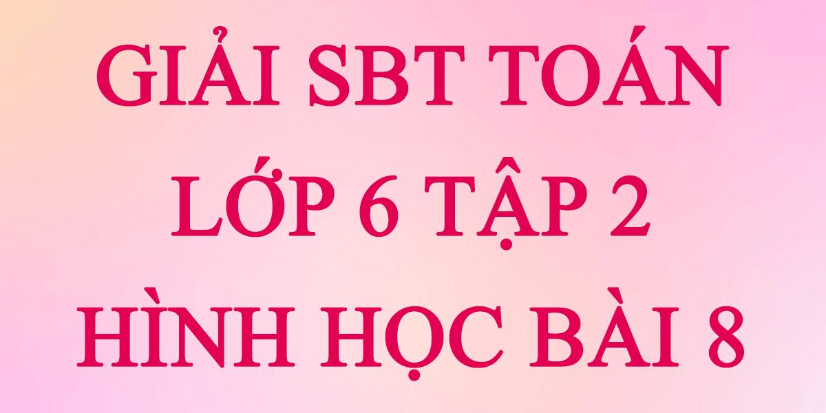 giai-sbt-toan-lop-6-tap-2-hinh-hoc-bai-8.png