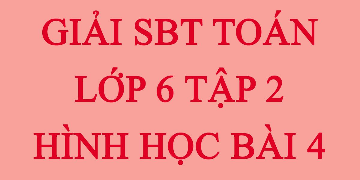 giai-sbt-toan-lop-6-tap-2-hinh-hoc-bai-4.png