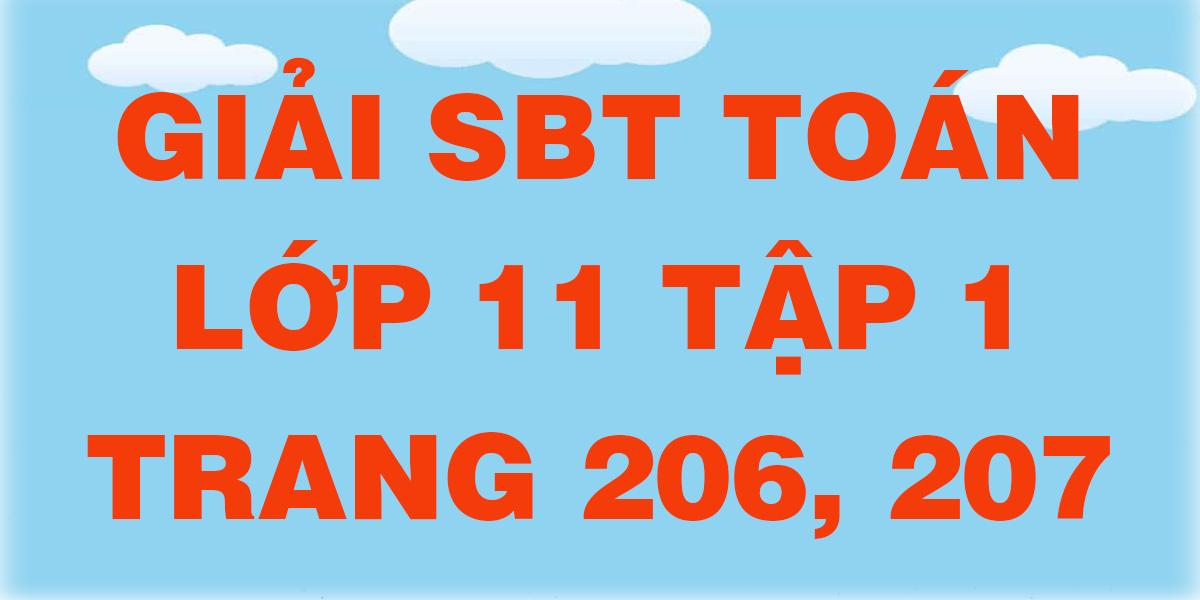 giai-sbt-toan-lop-11-tap-1-trang-206-207.png
