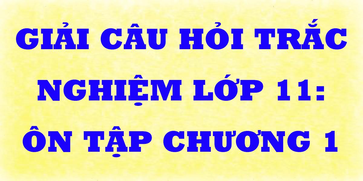giai-cau-hoi-trac-nghiem-toan-lop-11-on-tap-chuong-1-p2.png