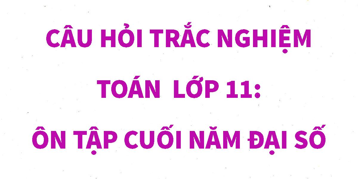 cau-hoi-trac-nghiem-toan-11-on-tap-cuoi-nam.png