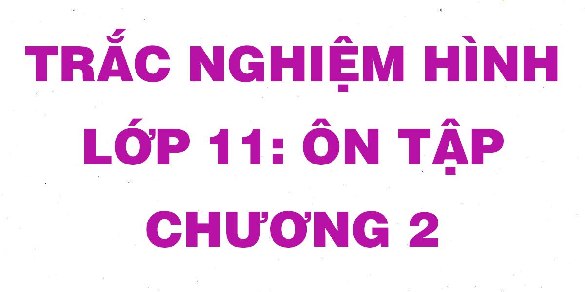 cau-hoi-trac-nghiem-toan-hinh-11-on-tap-chuong-2.png