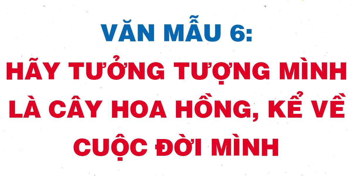 hay-tuong-tuong-minh-la-cay-hoa-hong-ke-ve-cuoc-doi-minh.png