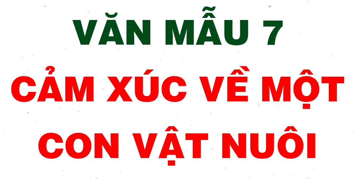 cam-xuc-ve-con-vat-nuoi.png