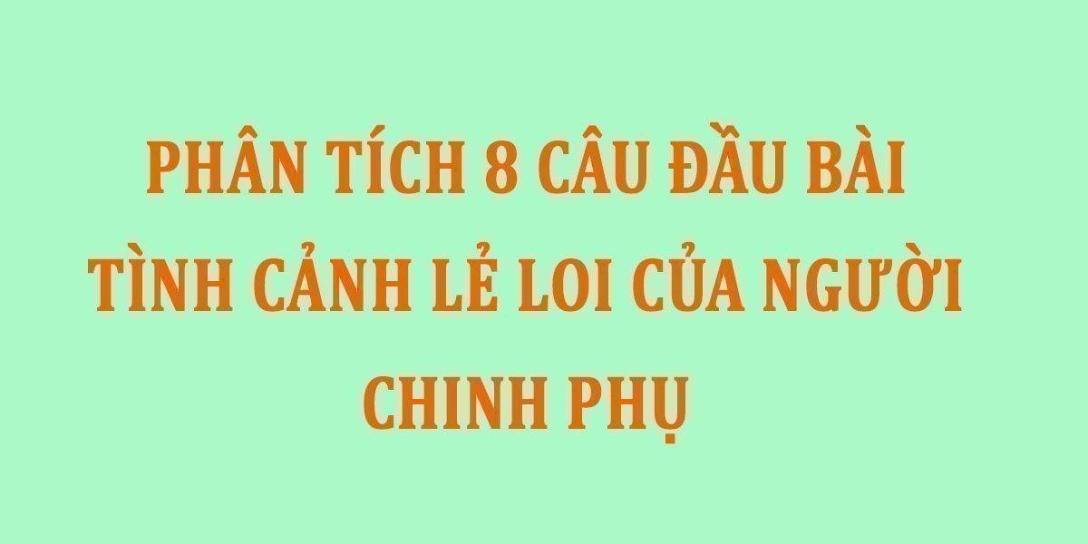 phan-tich-8-cau-dau-bai-tinh-canh-le-loi-cua-nguoi-chinh-phu.jpg