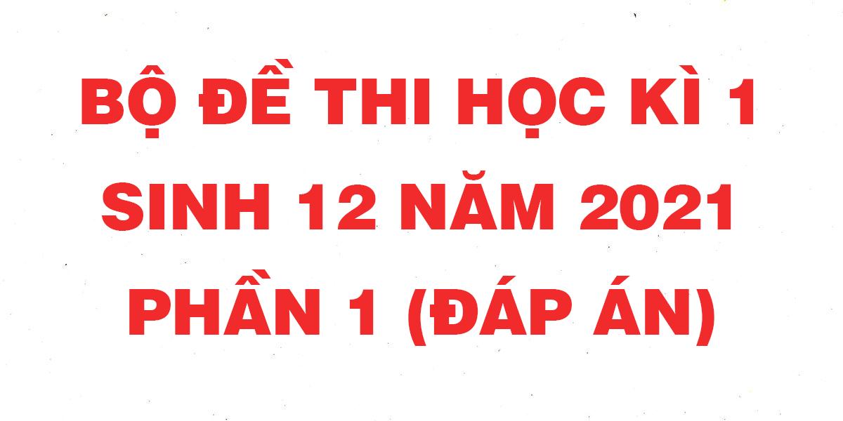 bo-de-kiem-tra-hoc-ki-1-mon-sinh-12-nam-2021-co-dap-an-phan-1.png