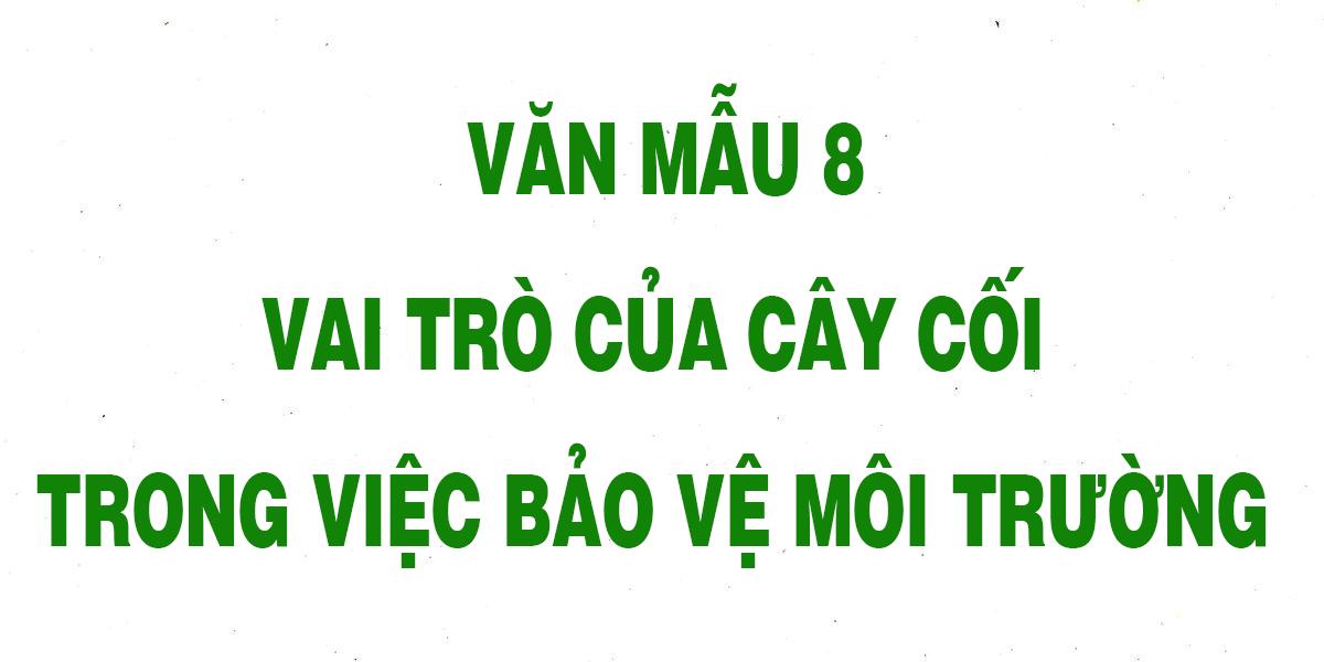 van-mau-8-vai-tro-cua-cay-coi-trong-viec-bao-ve-moi-truong-chon-loc.png
